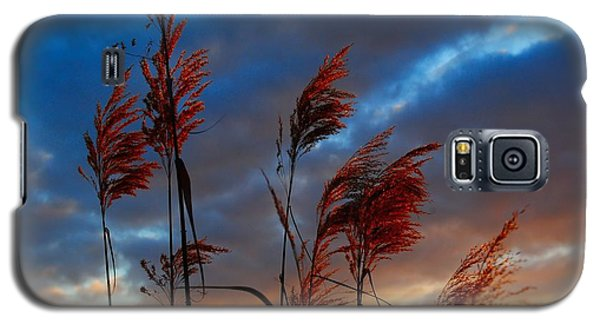 Touched By The Sunset Galaxy S5 Case