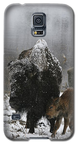 Galaxy S5 Case featuring the photograph Toughing It Out by Gary Hall