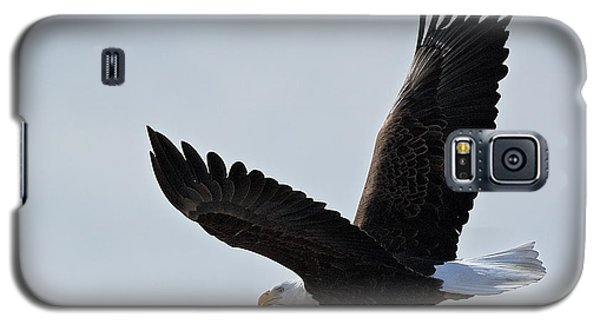 Galaxy S5 Case featuring the photograph Tower Road Bald Eagle by Stephen  Johnson