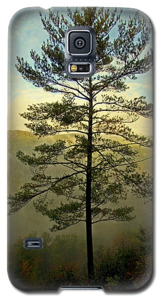 Galaxy S5 Case featuring the photograph Towering Pine by Suzanne Stout