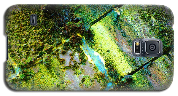 Galaxy S5 Case featuring the photograph Toxic Moss by Christiane Hellner-OBrien