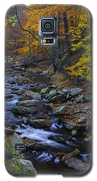 Tracking Color - Big Hunting Creek Catoctin Mountain Park Maryland Autumn Afternoon Galaxy S5 Case