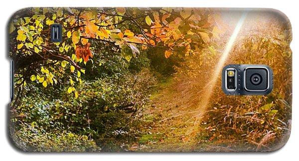 Fall Trail Galaxy S5 Case