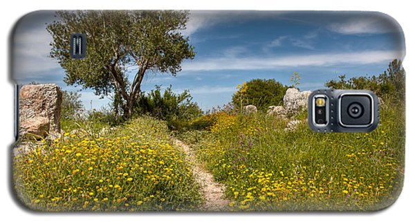 Galaxy S5 Case featuring the photograph Trail Of Spring by Uri Baruch