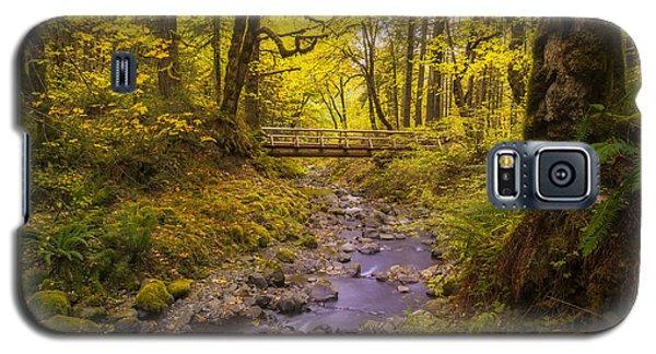 Trail Through Autumn Galaxy S5 Case