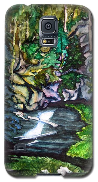 Galaxy S5 Case featuring the painting Trail To Broke-off by Lil Taylor