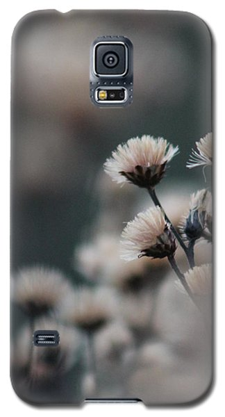 Galaxy S5 Case featuring the photograph Tranquil by Bruce Patrick Smith
