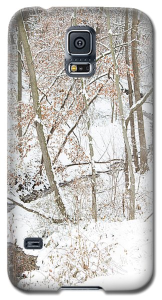 Tranquil Winters Creek Galaxy S5 Case