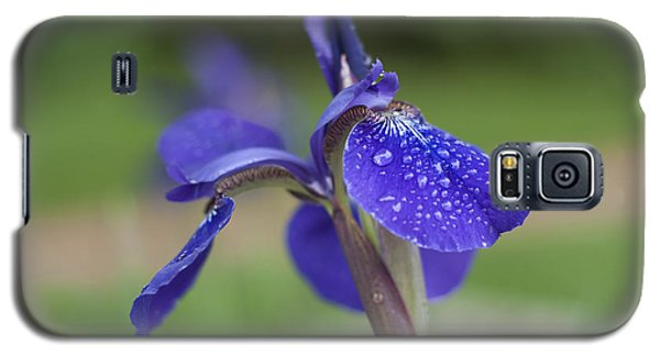 Galaxy S5 Case featuring the photograph Tranquility by Miguel Winterpacht