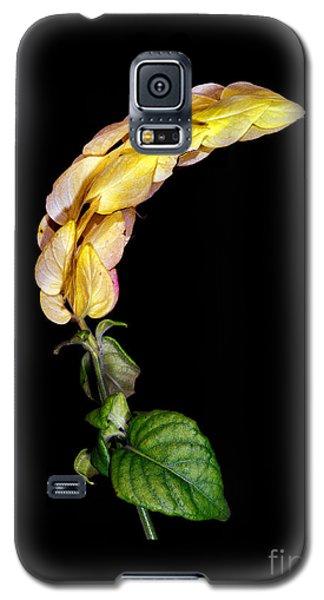 Transfer 2 Galaxy S5 Case