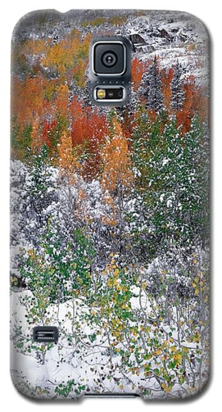Transition Day Galaxy S5 Case