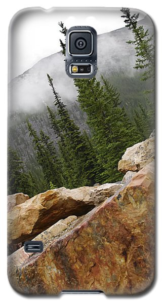 Transition Galaxy S5 Case by Rhonda McDougall