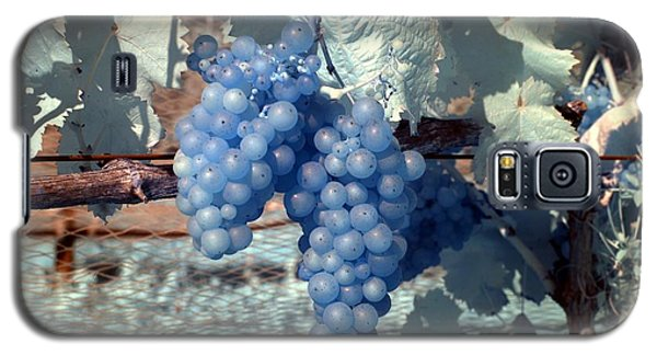 Transparent Grapes Galaxy S5 Case