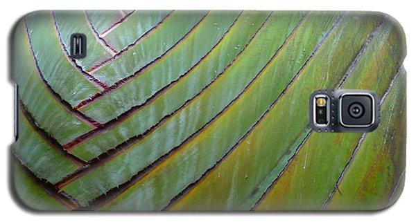 Traveler's Palm Design Galaxy S5 Case