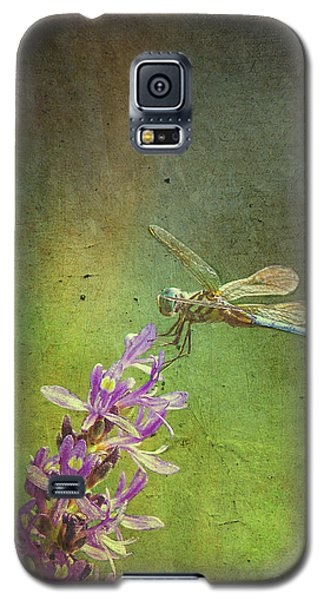 Treading Lightly Galaxy S5 Case