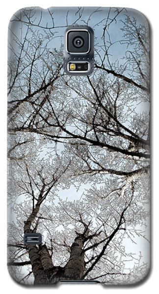 Galaxy S5 Case featuring the photograph Tree 2 by Minnie Lippiatt