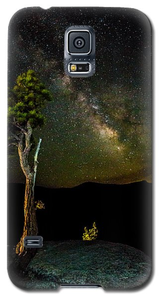 Tree Amongst The Stars Galaxy S5 Case by Mike Lee