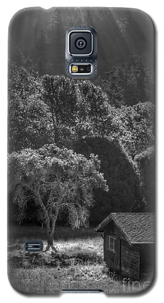 Tree And Barn On Foggy Morning Galaxy S5 Case