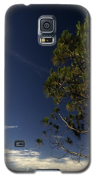 Tree And Mountain Galaxy S5 Case