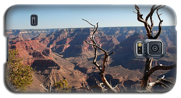 Tree At Grand Canyon Galaxy S5 Case