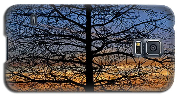 Tree At Sunset Galaxy S5 Case