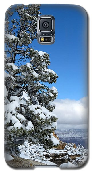 Galaxy S5 Case featuring the photograph Tree At The Grand Canyon by Laurel Powell