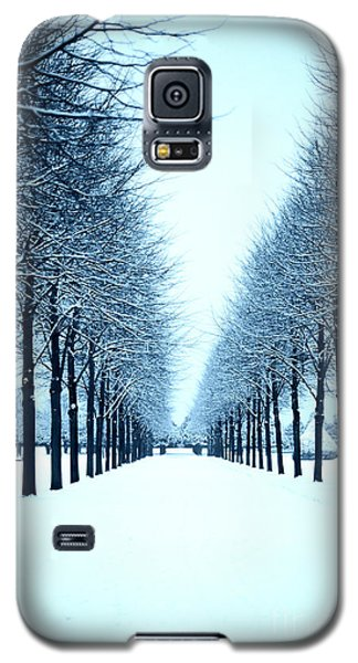 Tree Avenue In Snow Galaxy S5 Case