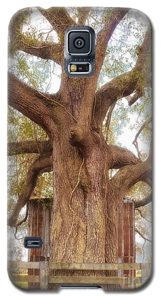 Tree Barn And Fence Galaxy S5 Case