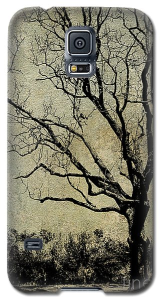 Tree Before Spring Galaxy S5 Case