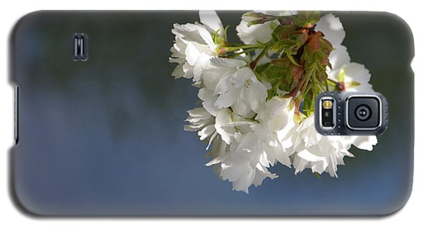 Galaxy S5 Case featuring the photograph Tree Blossoms by Marilyn Wilson