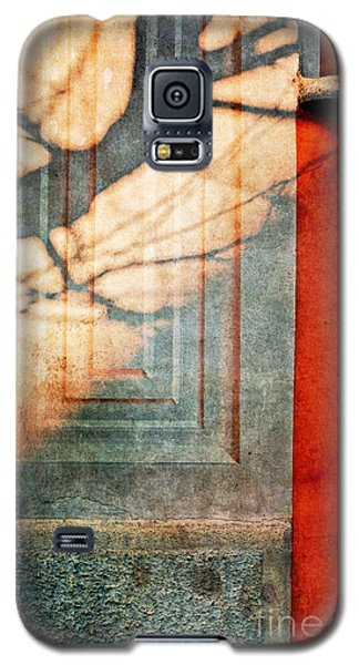 Tree Branches Shadow On Wall Galaxy S5 Case