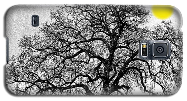 Galaxy S5 Case featuring the photograph Tree By Moon Light by Wanda Brandon