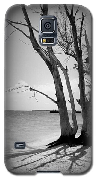 Tree By The Sea Galaxy S5 Case