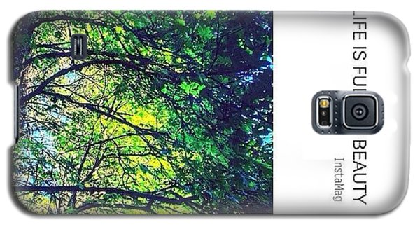 Sunny Galaxy S5 Case - Tree Canopy From My Afternoon Walk by Anna Porter