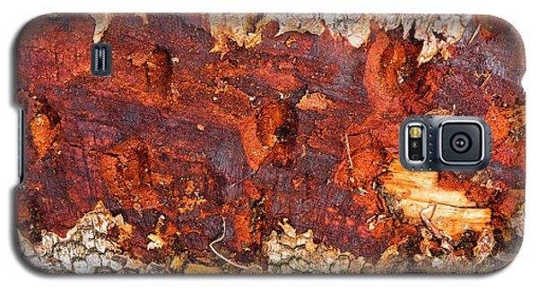 Tree Closeup - Wood Texture Galaxy S5 Case