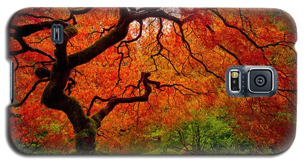 Tree Fire Galaxy S5 Case by Darren  White