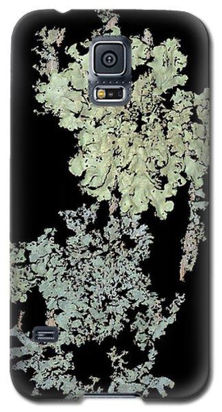 Tree Fungus Galaxy S5 Case