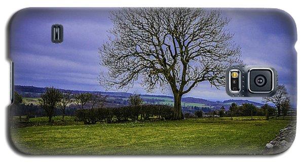 Tree - Hadrian's Wall Galaxy S5 Case by Mary Carol Story