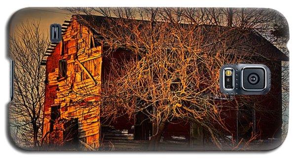 Tree House Galaxy S5 Case