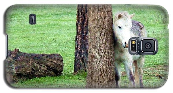 Tree Hugger Galaxy S5 Case