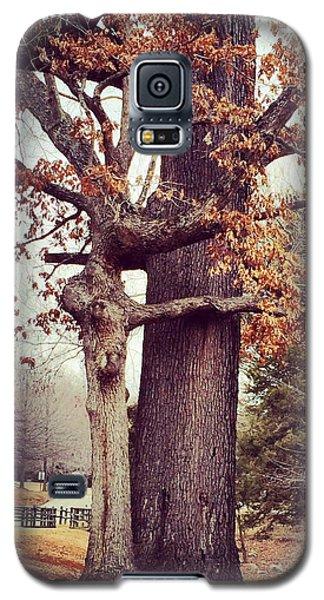 Tree Hugging Galaxy S5 Case