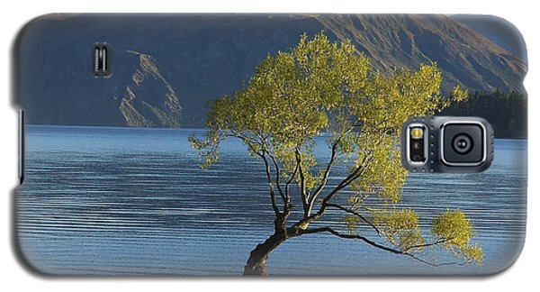 Tree In Lake Wanaka Galaxy S5 Case by Stuart Litoff
