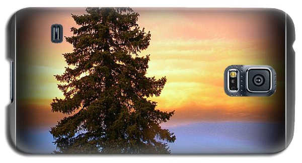 Galaxy S5 Case featuring the photograph Tree In Sunrise by Michelle Frizzell-Thompson
