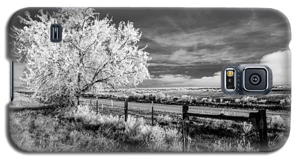 Tree In Winter Galaxy S5 Case by Jim Snyder
