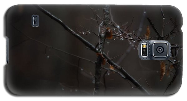 Tree Limb With Rain Drops 2 Galaxy S5 Case