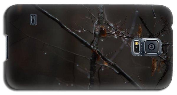 Tree Limb With Rain Drops 2 Galaxy S5 Case