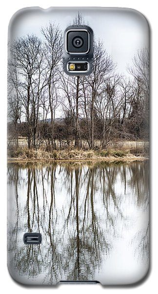 Tree Line In Winter  Galaxy S5 Case