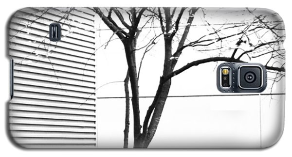 Tree Lines Galaxy S5 Case