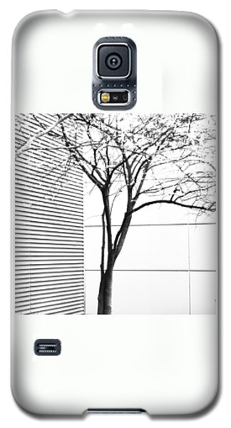 Tree Lines Galaxy S5 Case