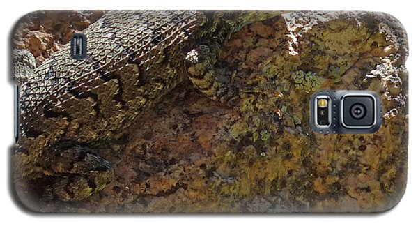 Tree Lizard Galaxy S5 Case